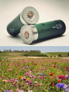 The-Flower-Shell-Lets-You-Plant-Seeds-Using-a-12-Gauge-Shotgun.jpg